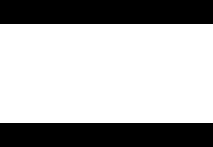 Darkside Custom Harleys Logo